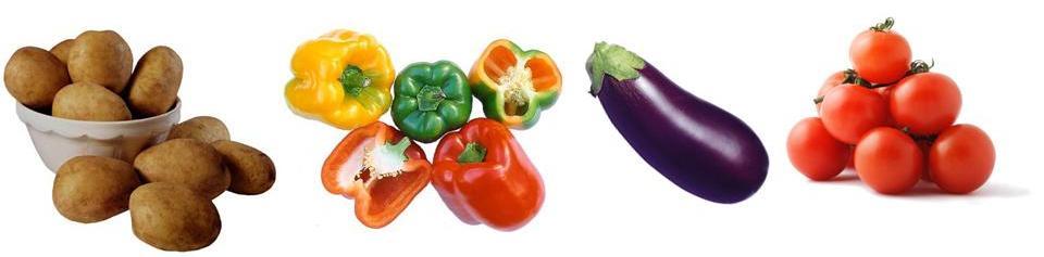 Rheumatoid Arthritis Diet Top Tips and Advice