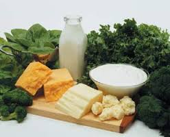 food high in calcium